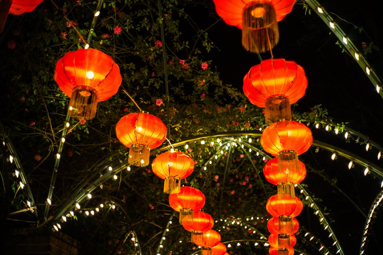 china_lights-178.jpg