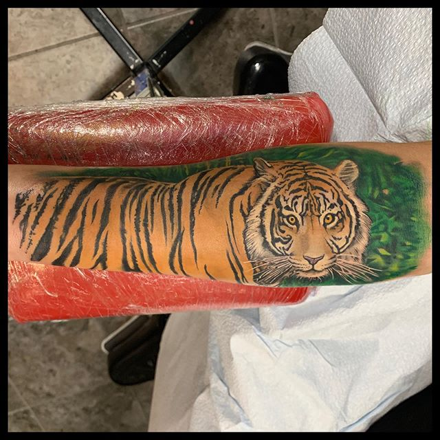 Tiger for Amy. #nofilters