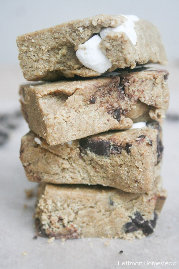 S'mores Protein Bars