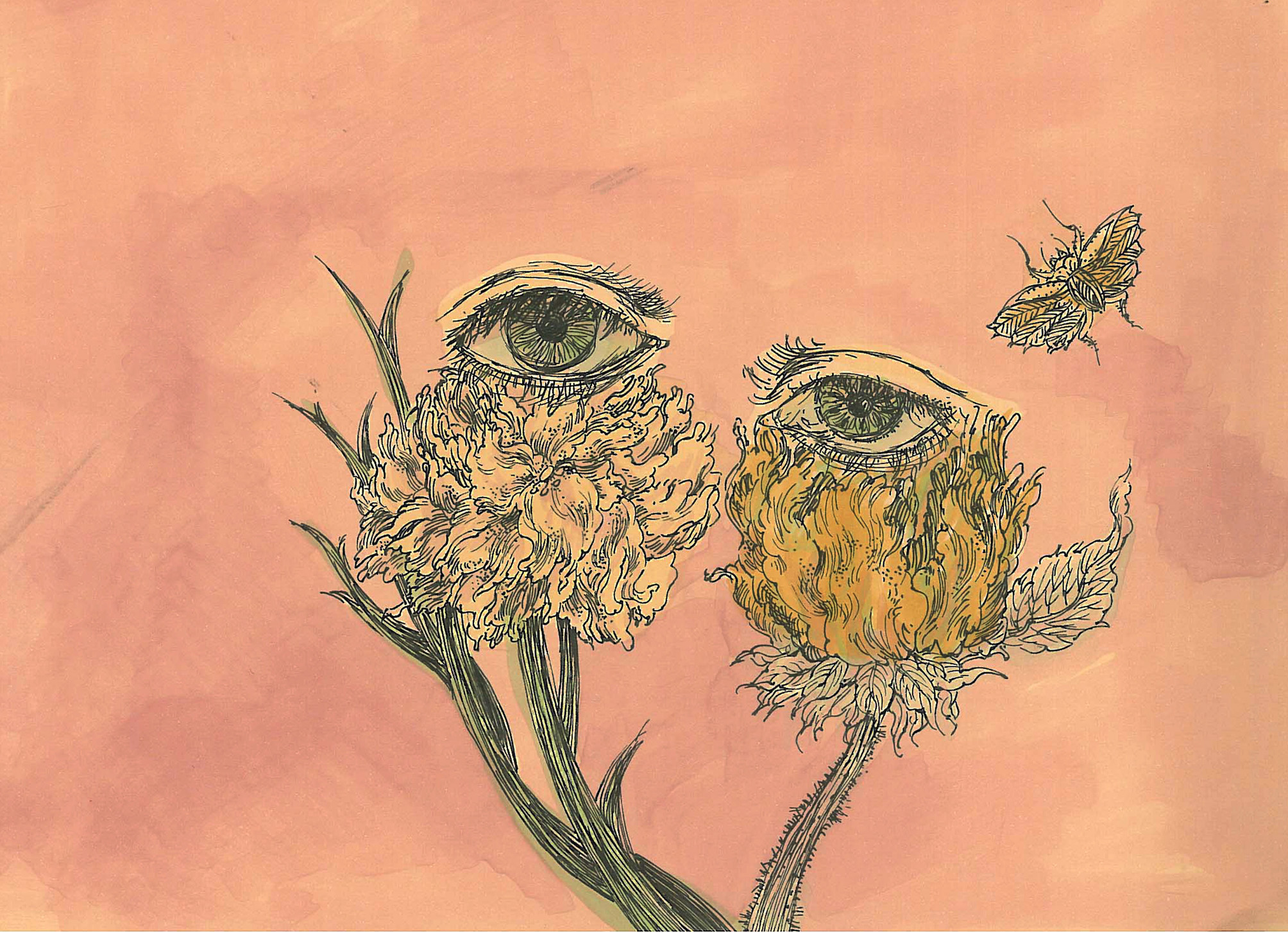 ART BY SARA DEHGHAN
