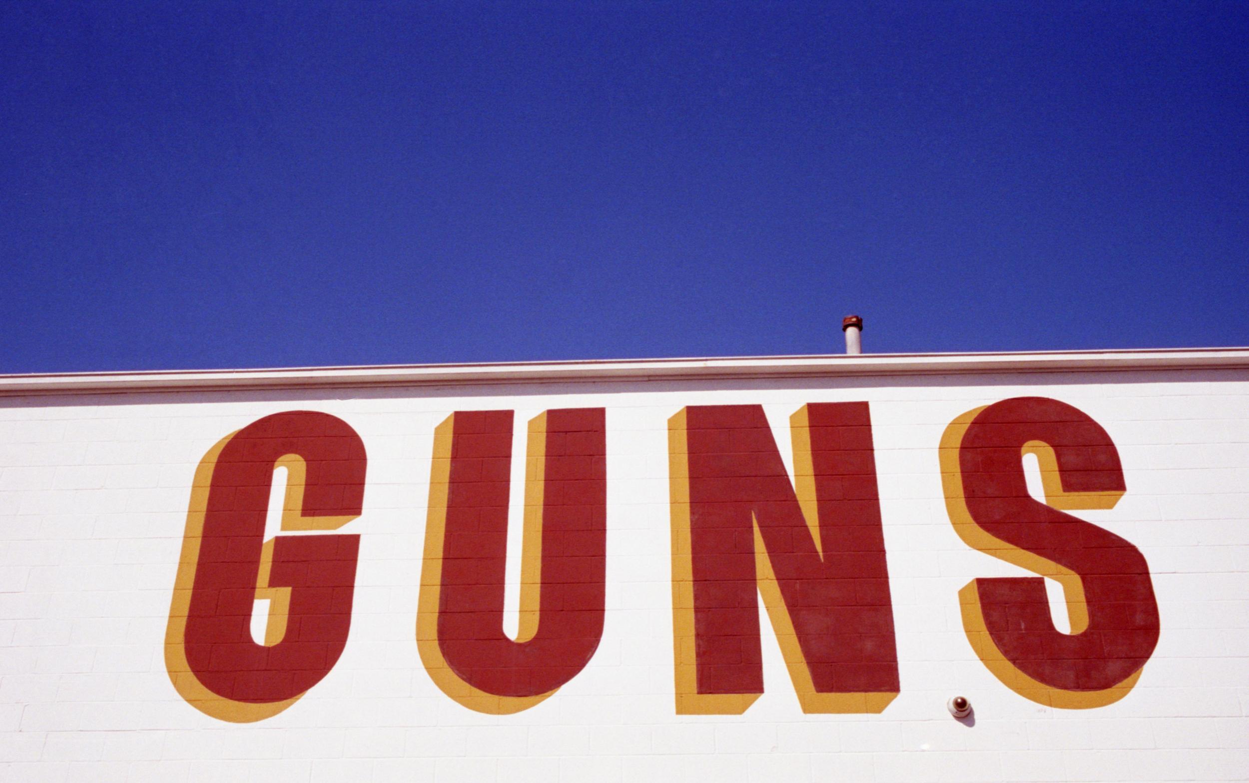guns for port.jpg