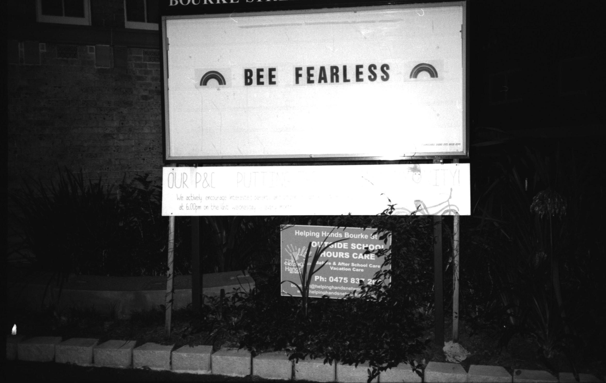 bee fearless.jpg