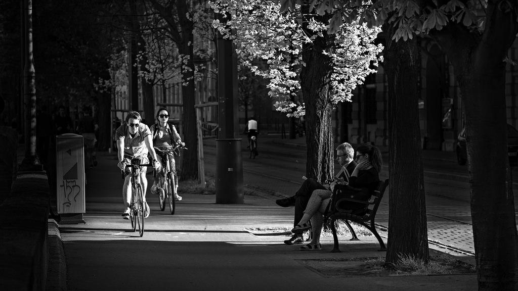 Into The Light... Nikon D810 -