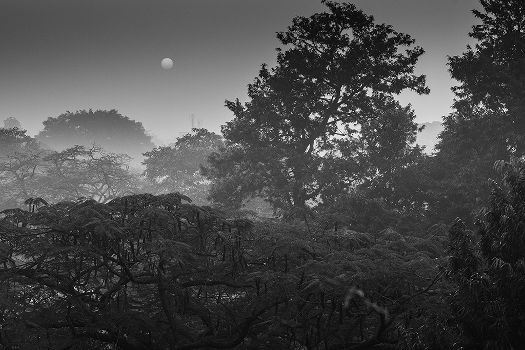 Alien Landscape Nikon D800 - Nikkor 24-70 f/2.8G
