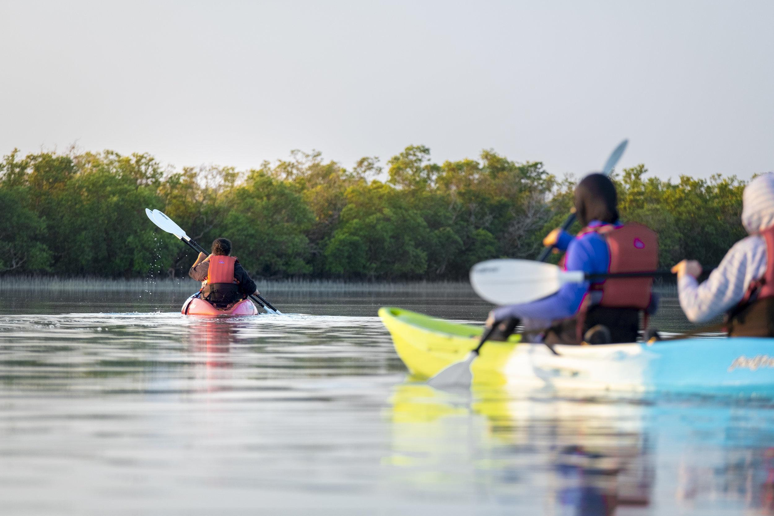 Double kayak action mangroves_Abu Dhabi_(c)Oliver Wheeldon.jpg