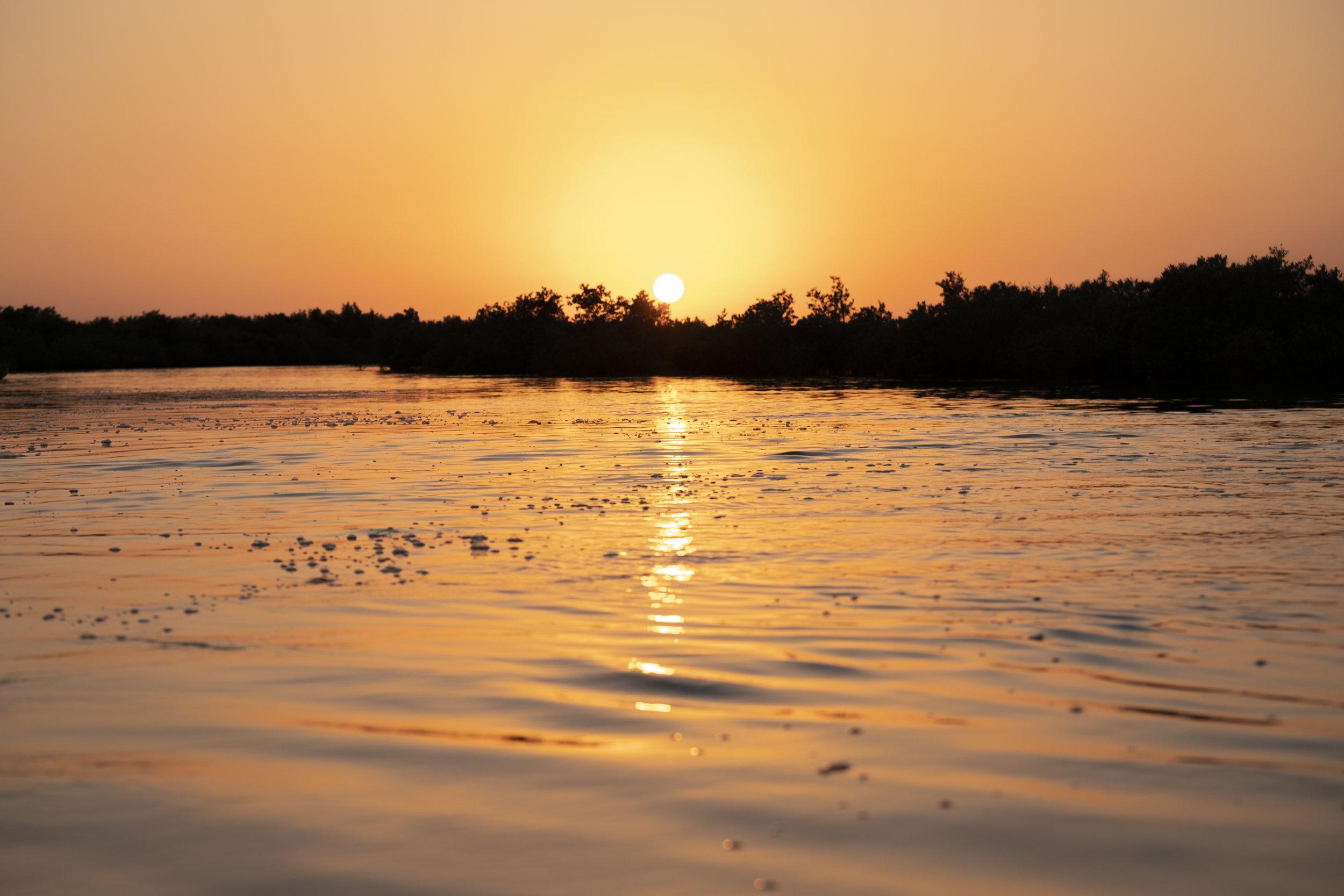 Calm water mangroves sunset_Abu Dhabi_(c)Oliver Wheeldon.jpg