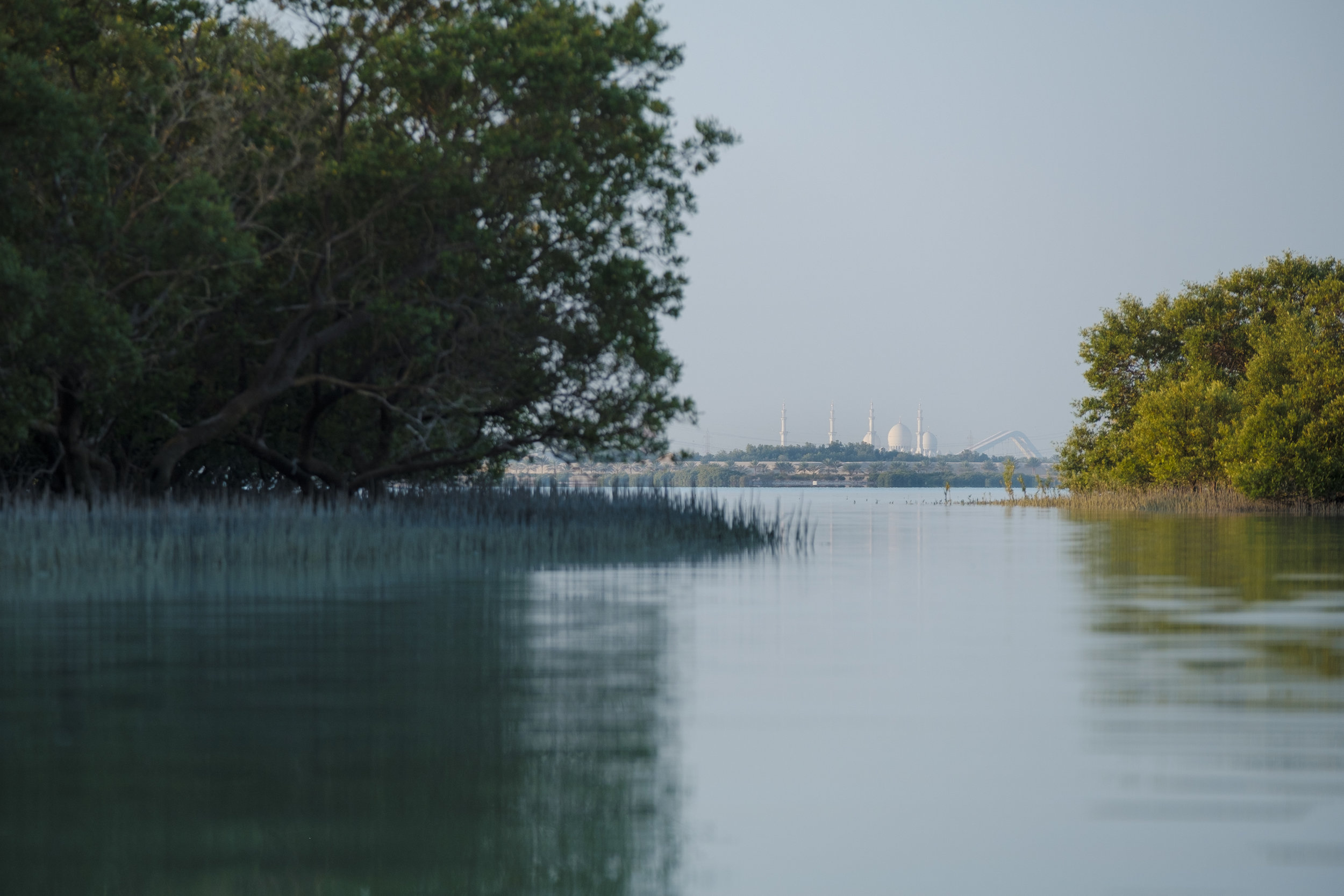 Sheikh Zayed grand mosque through mangroves 2_Abu Dhabi_(c)Oliver Wheeldon.jpg