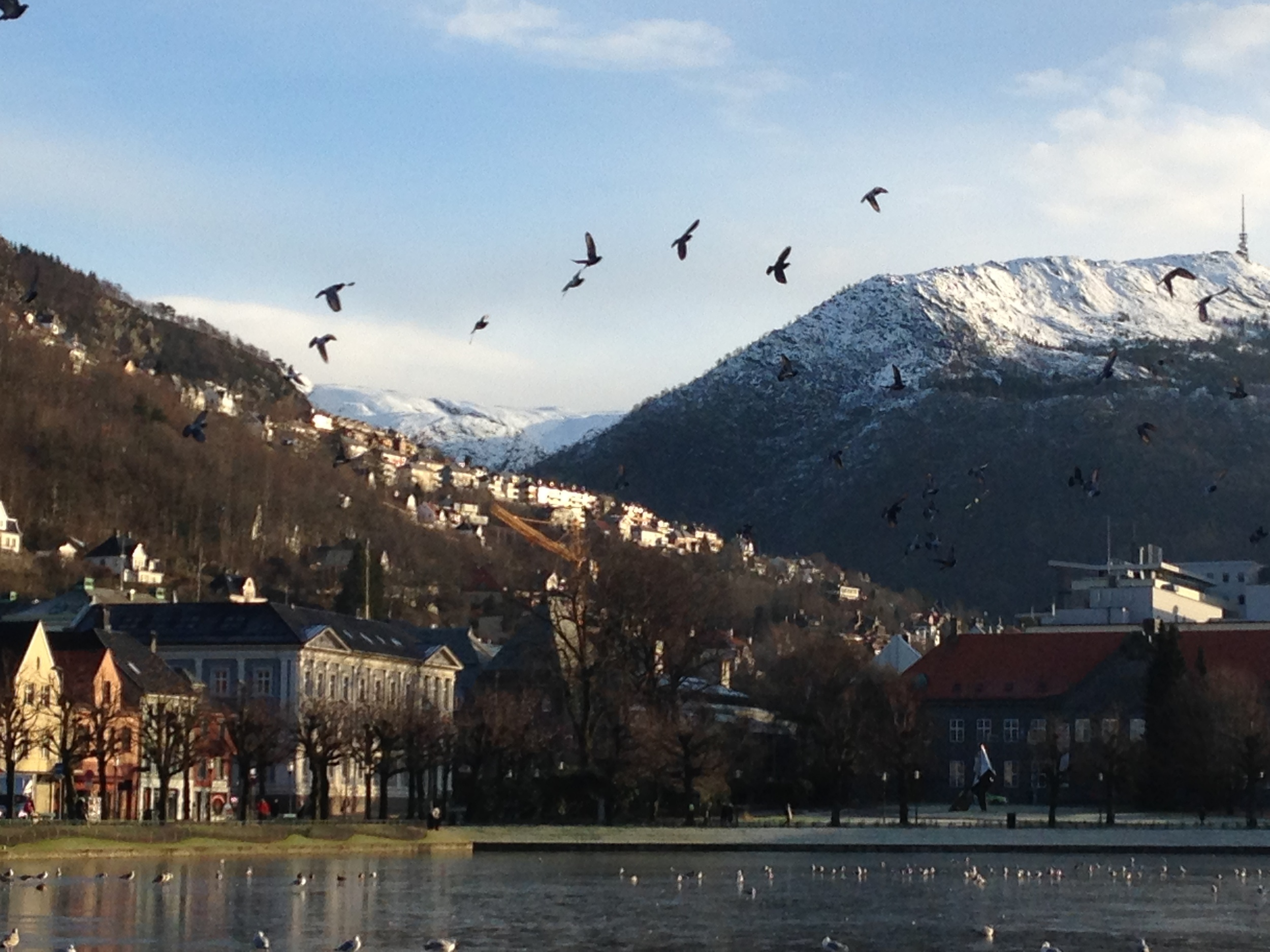 This is the view from downtown Bergen, Norway
