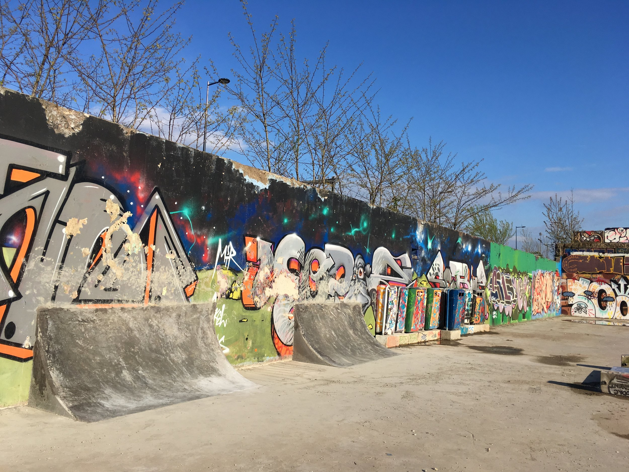 Wallride skatespot De Yard