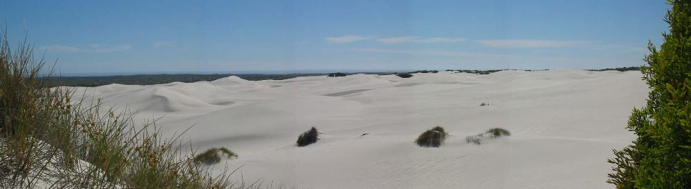 Atlantis Dunes, Philladelphia _9359.jpg