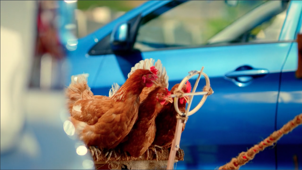 "MIGROS SUPERMARKET - ""CHICKEN'S ESCAPE""  -  Paulo Henriques"