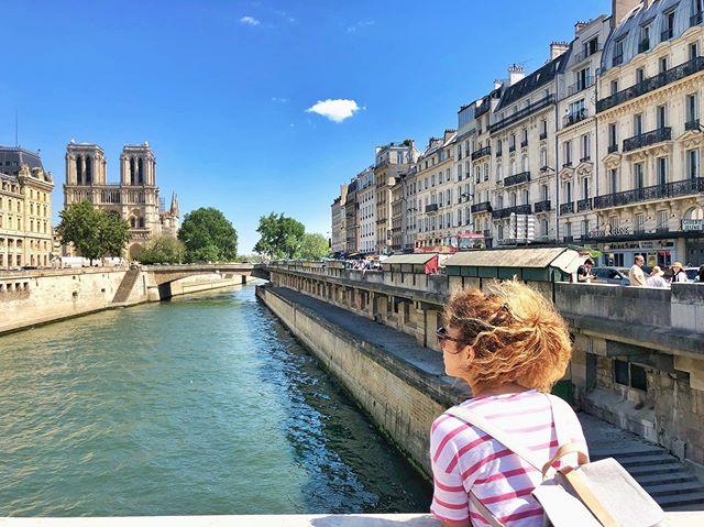 Dracarys? 🐉 #notredame #paris #cathedralenotredamedeparis