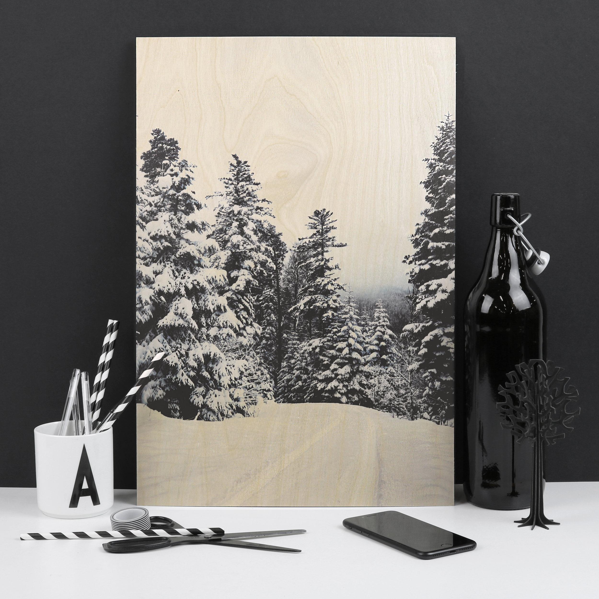 snow forest black and white desk.jpg