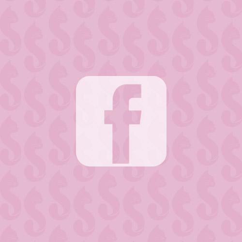 sweetkitty_facebook2.jpg