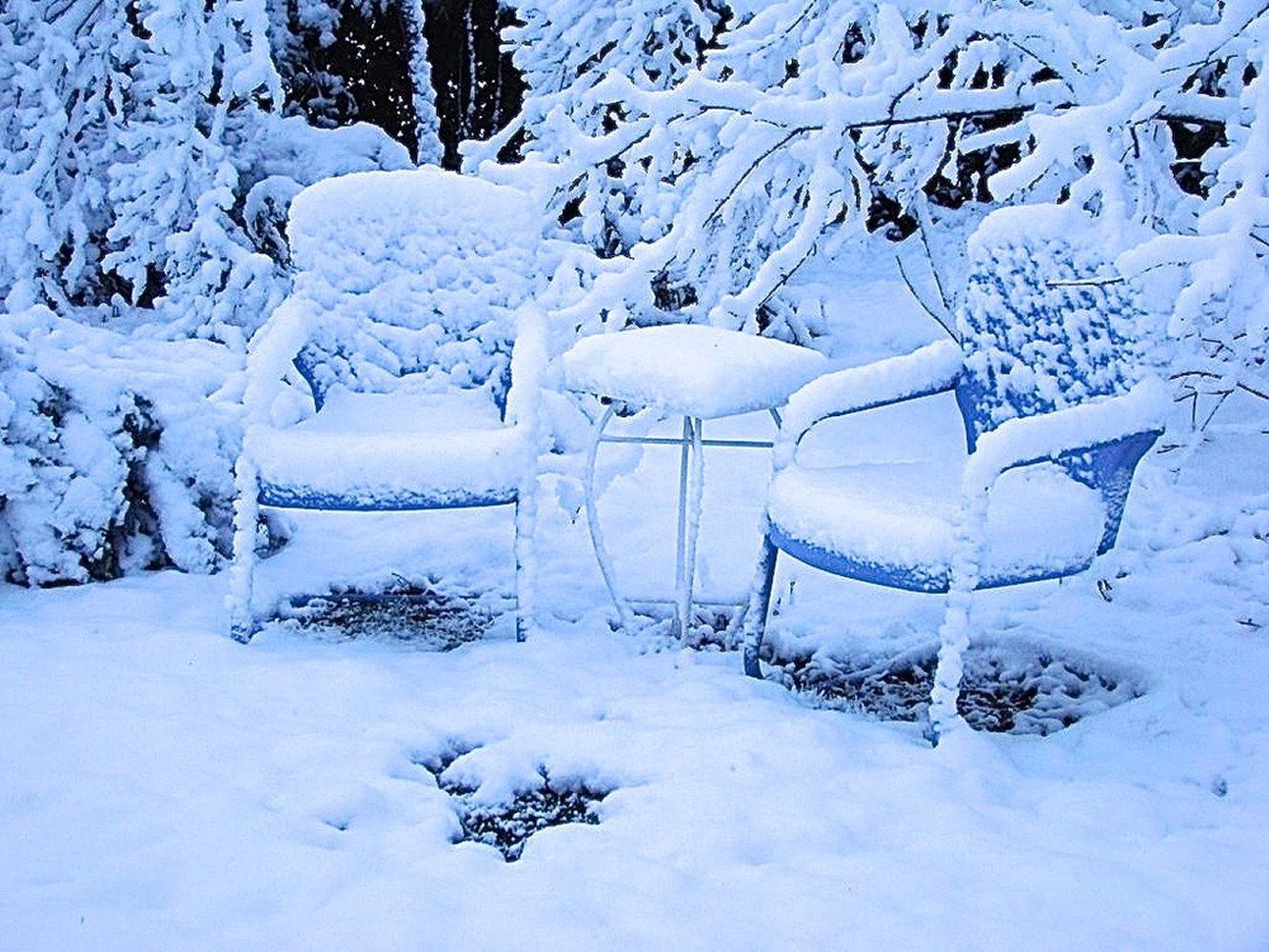 Winter-gardens-DSC01729creative-friends-series.JPG