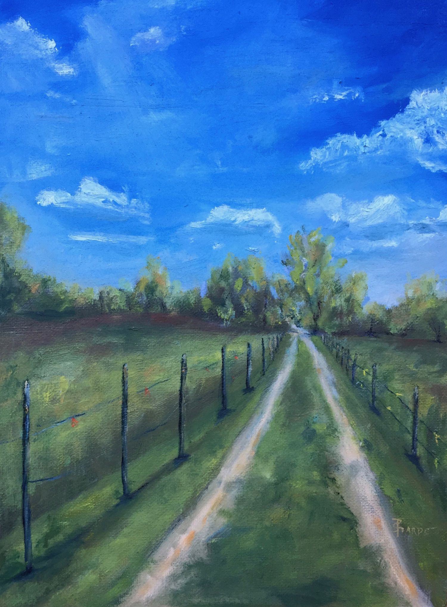 farm-landscape-driveway-oil-painting-phyllis-sharpe-greensboro.jpg