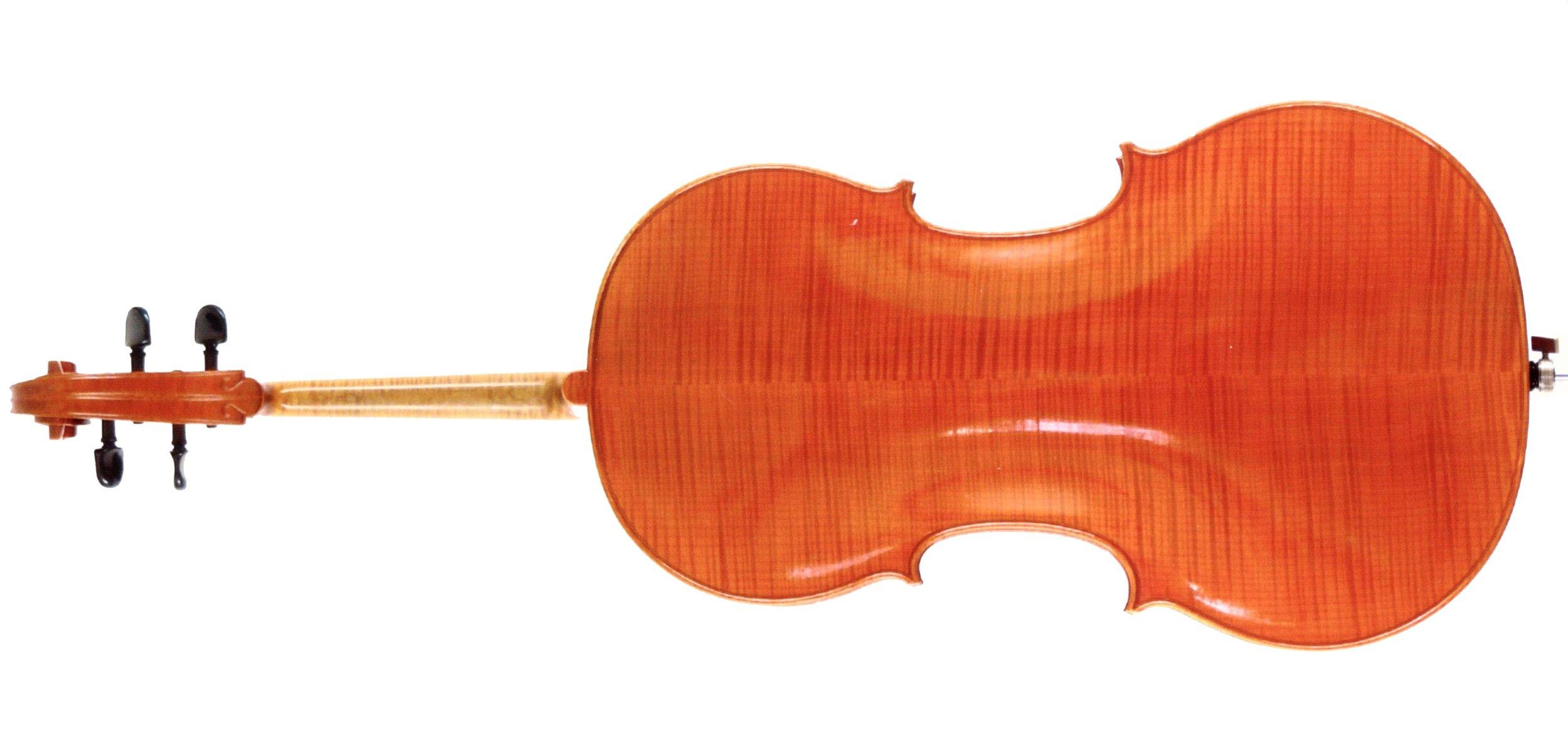 Cello Rück.jpg