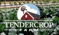 tendercrop.JPG