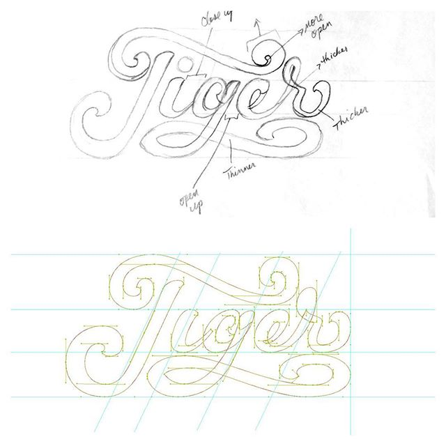 More #workinprogress on this #tiger project. Didn't plan on #handlettering a #script, but even though this gig is taking longer than I had planned, it's been fun. Getting closer. #lettering #lettered #handtype #handles #vector #illustrator #wip #design #process