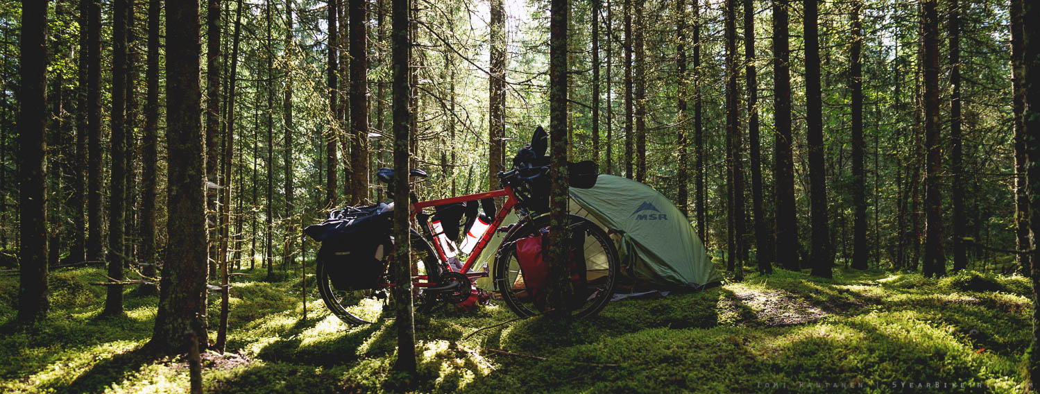 Camping spot in a spruce forest in Verdal.