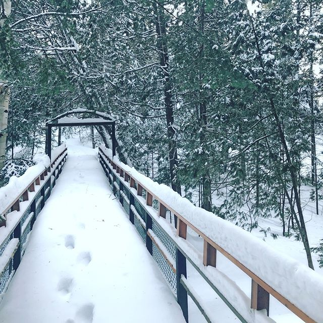 On a souhaité pour de la neige.. it worked!! ❄️❄️❄️ . . . #campouareau #wintercamp #campinwinter #snowybridge #winterwonderland #hiveraucamp #wishedforsnow