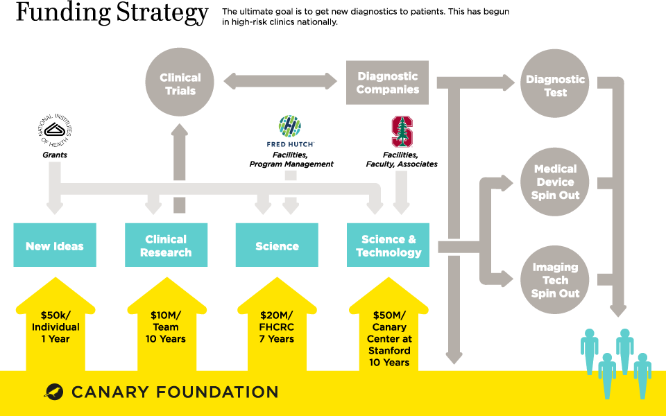 Animated Infographic  explains the unique and highly effective funding strategy of Canary Foundation