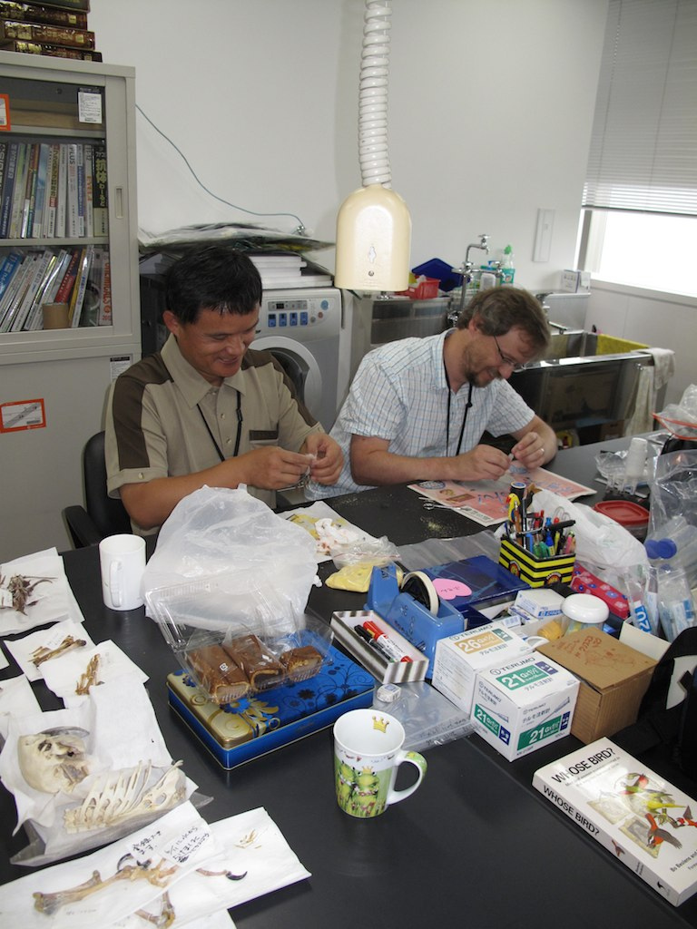 Preparing samples at the National Museum in Tokyo with Yao Cheng-te