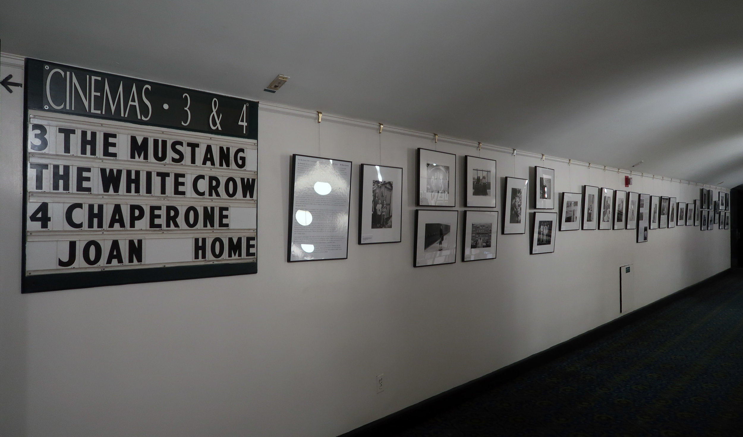 upstair screenings_3438.jpeg
