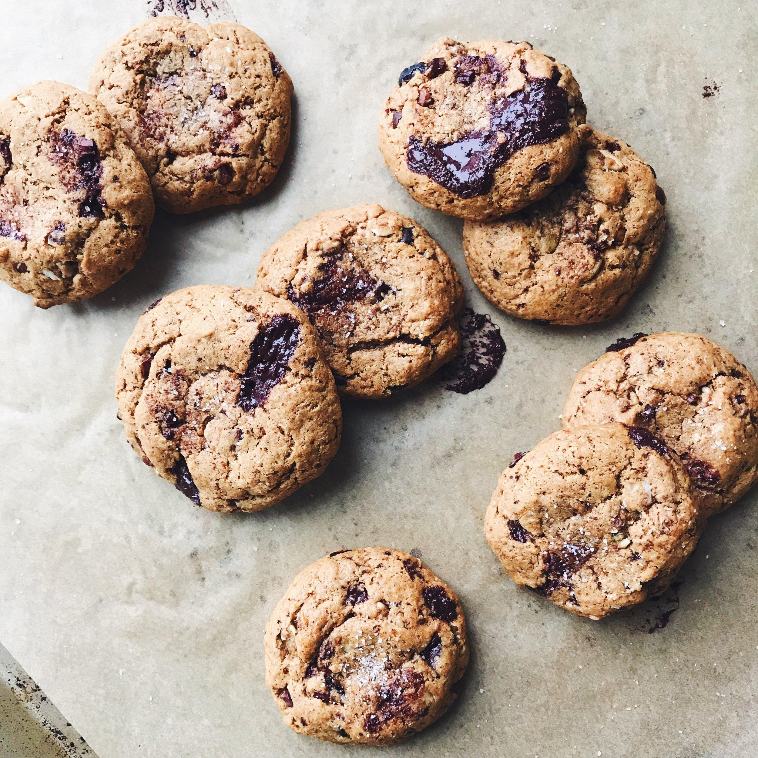 vitalproteins_compostcookies5.JPG