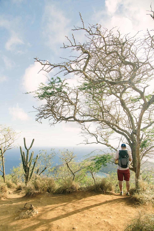 hawaii 2.jpg