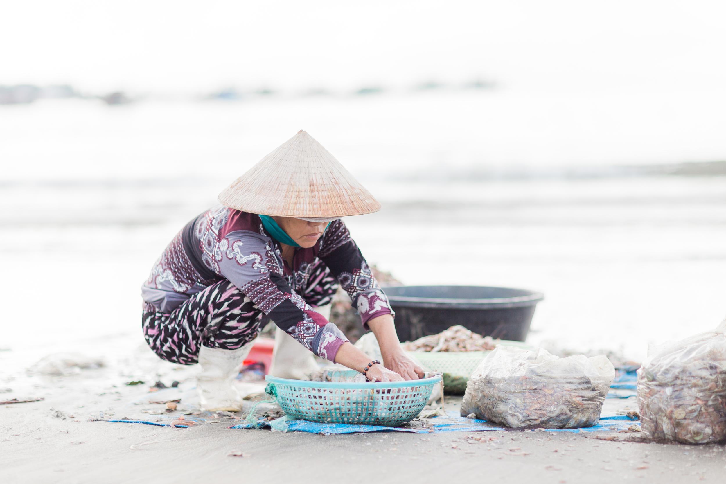 Da Nang Vietnam-9056.jpg