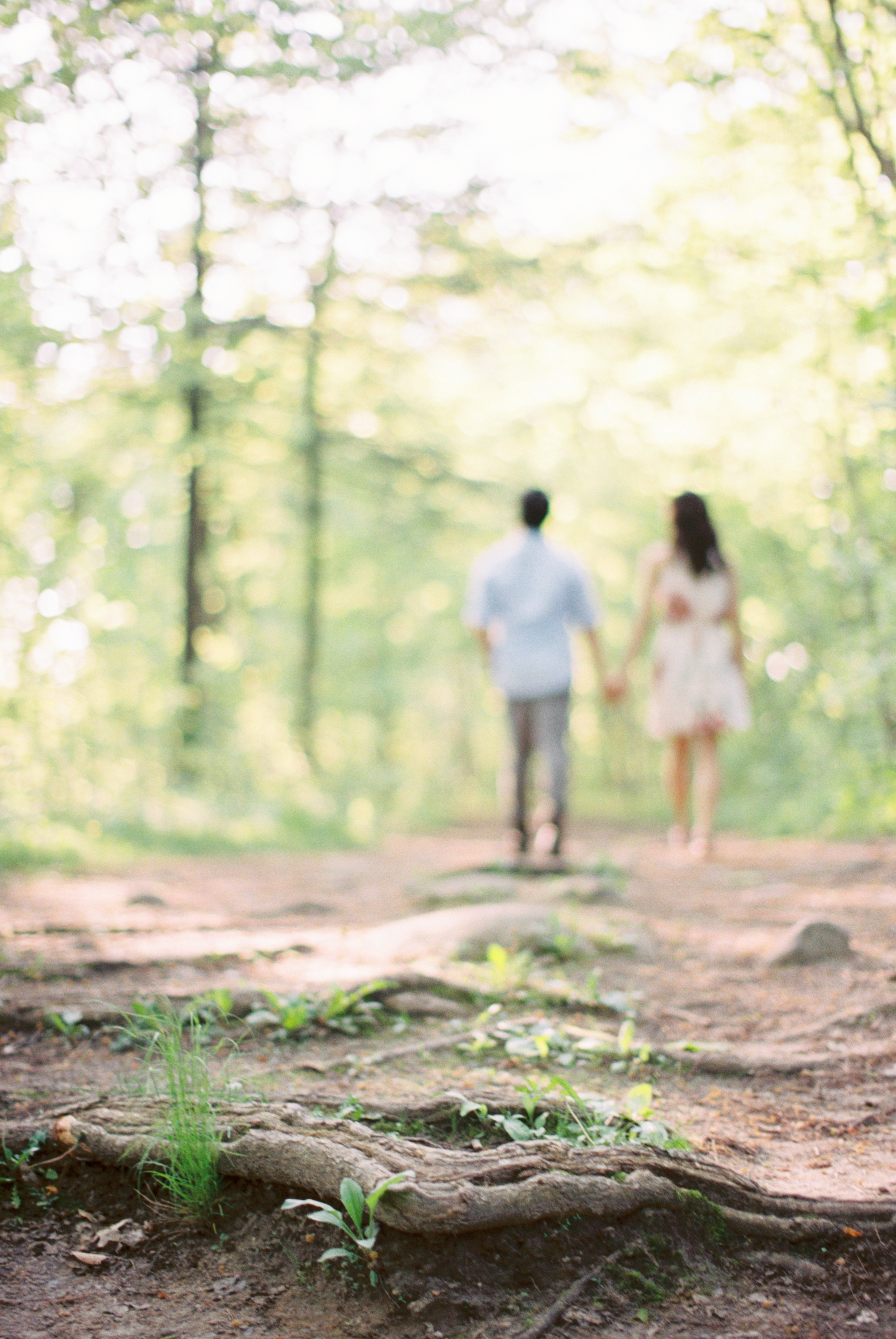 Rouge Valley Engagement Session-35.jpg
