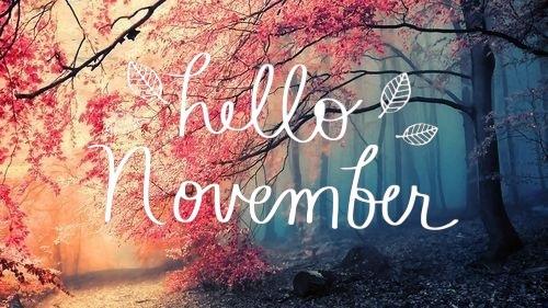 November 2018 -