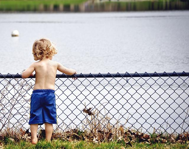 Boy Fence Boundary Pixabay.jpg
