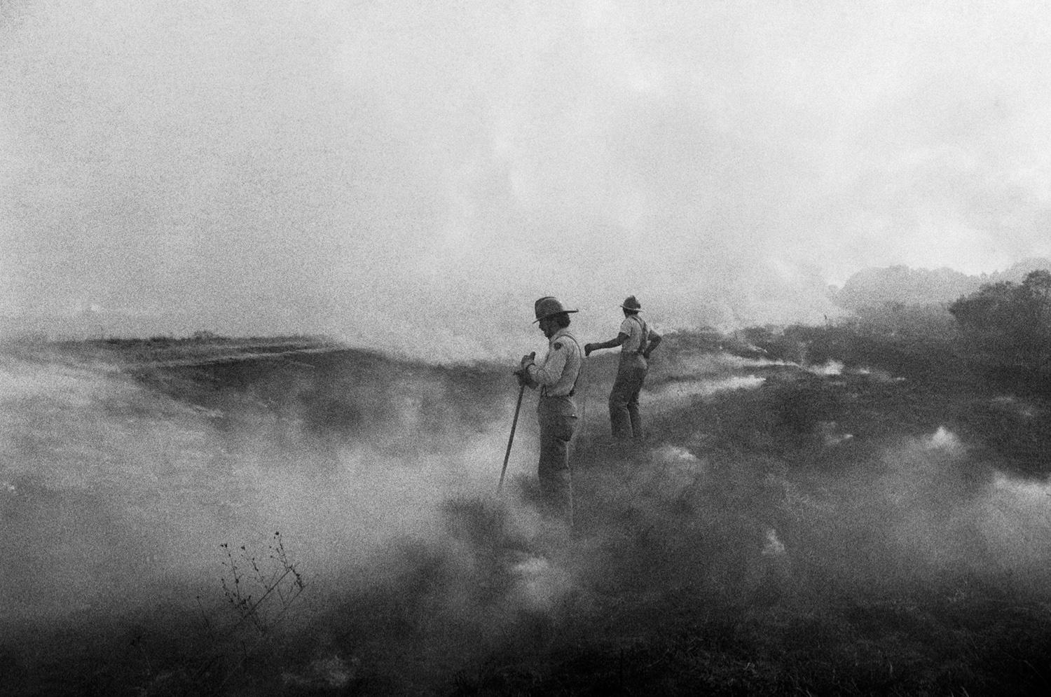 Brush Fire Jackson, MS 1976