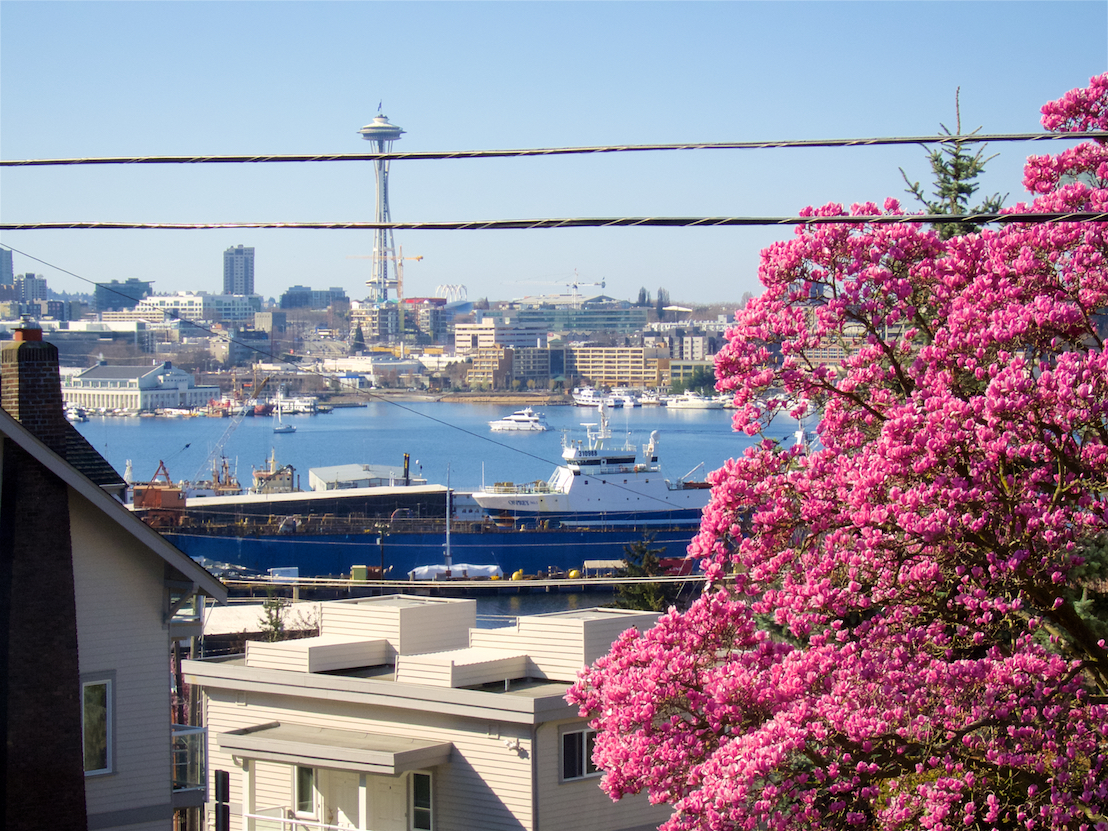 living room sunny view to space needle and lake union.jpg