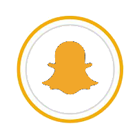 SNAP Gold ICon.png