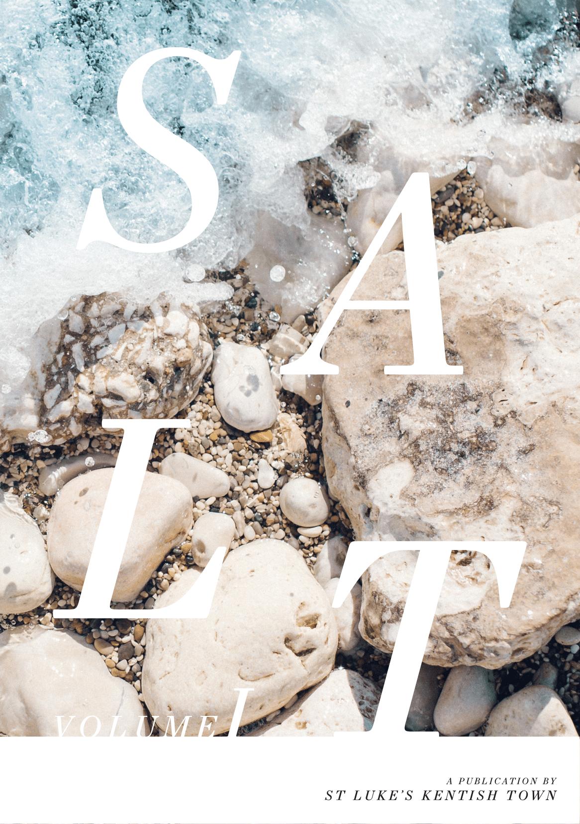SALT Cover 8-1.png