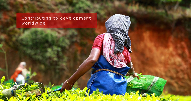 Contributing to development worldwide