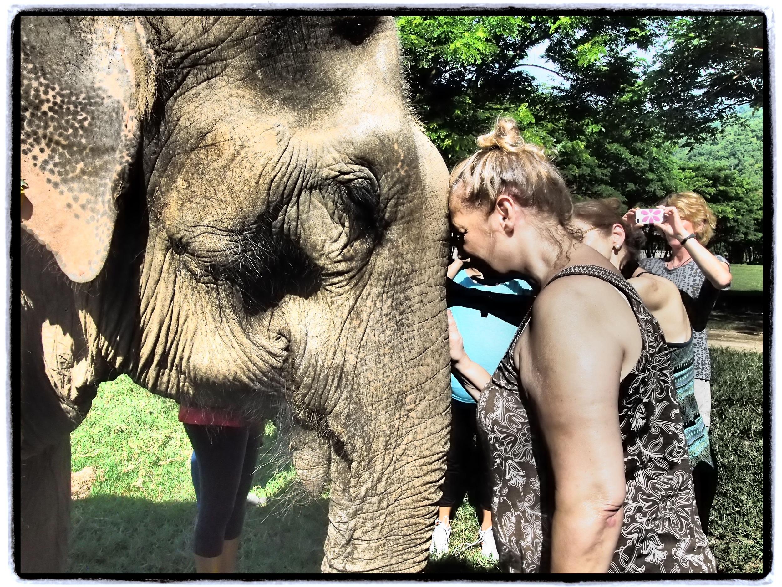 PHOTO ©PRAVASSA - in Thailand with the elephants