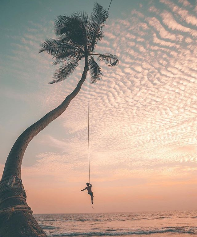 Swinging into the weekend like...🌴 ✨⠀⠀ ⠀⠀ While I'm not headed to Sri Lanka just yet (join me & @Pravassa there in October), I'm touching down in Mexico in a few hours. Check out my stories over the next couple of weeks as I scout this new Pravassa location and give you behind the scenes looks. 🎬 🎥 ⠀⠀ ⠀⠀ ⠀⠀ 📷 by @travelxls⠀⠀ ⠀⠀