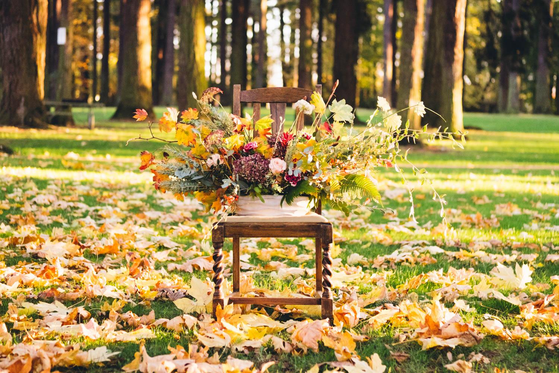 autumn_shoot-143.jpg