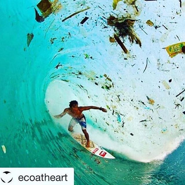Help us end this trash wave. Sign up for one of our trips today!
