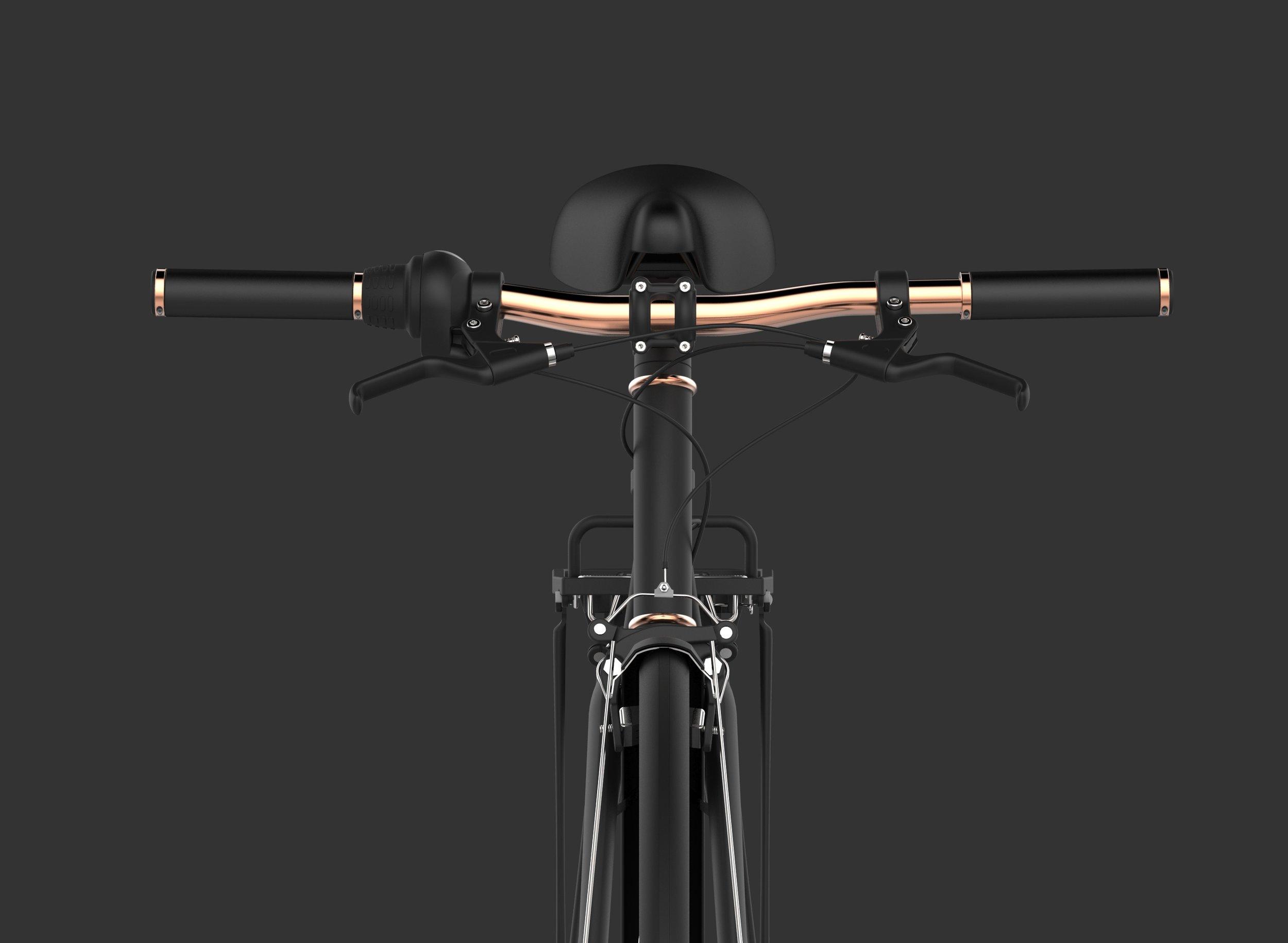 170202 BikeScene.2145.jpg