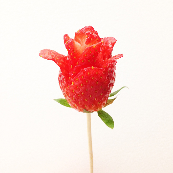 strawberry rose.jpg