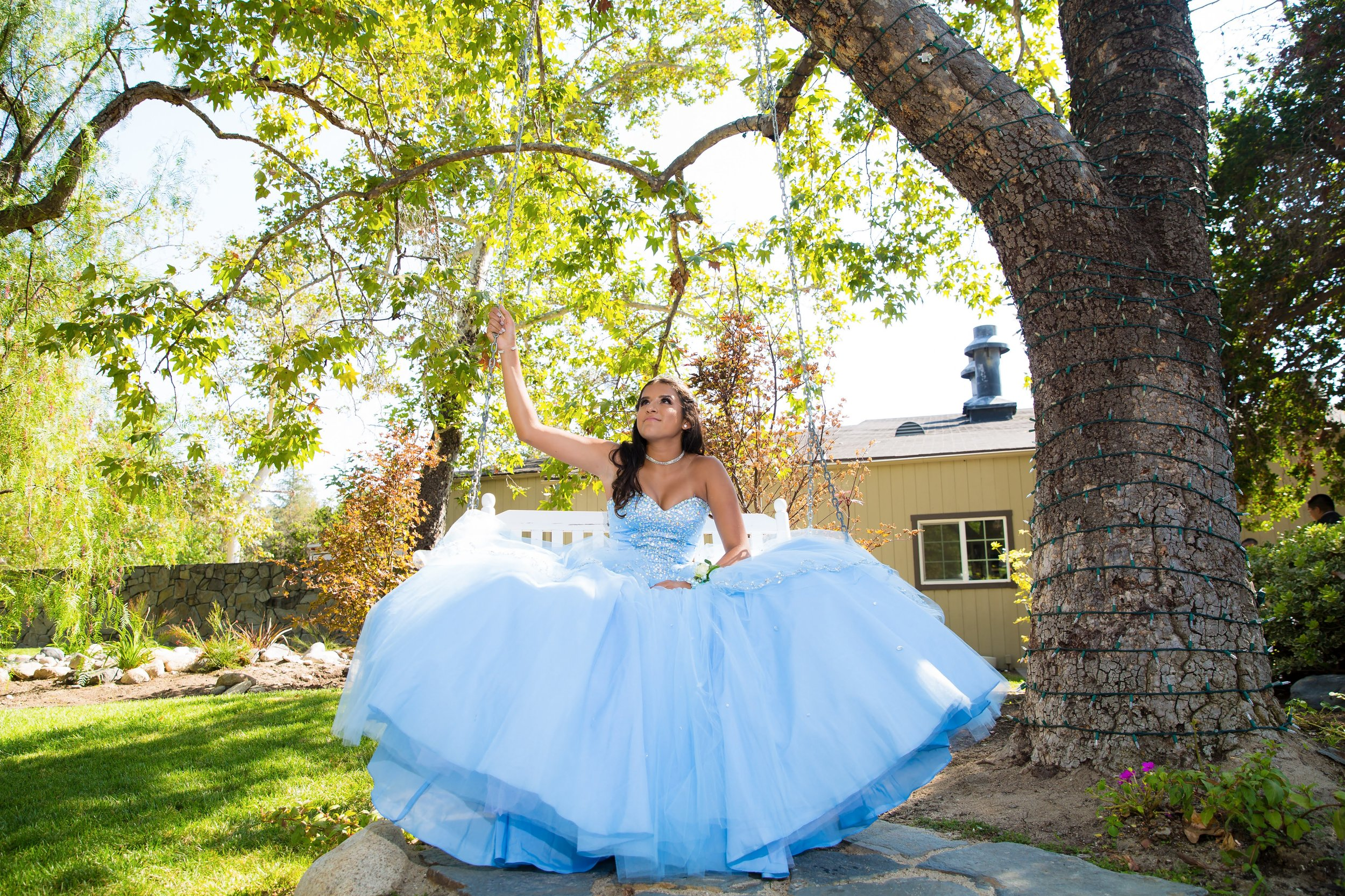 quince photographer debut