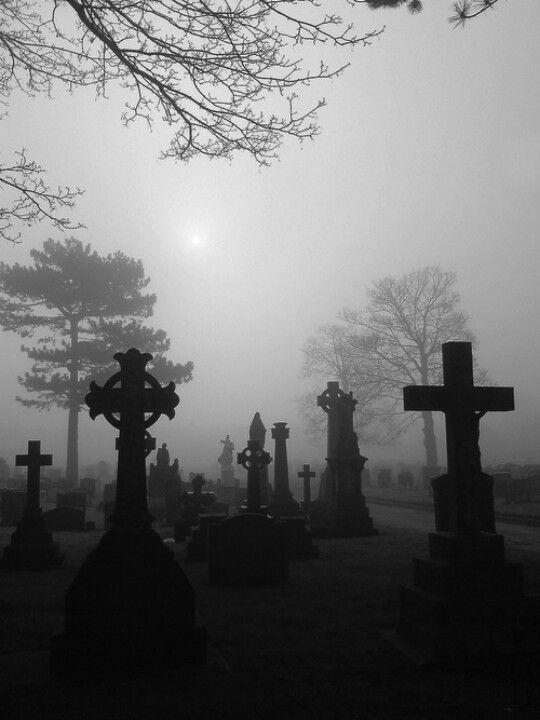 foggy cemetery.jpg