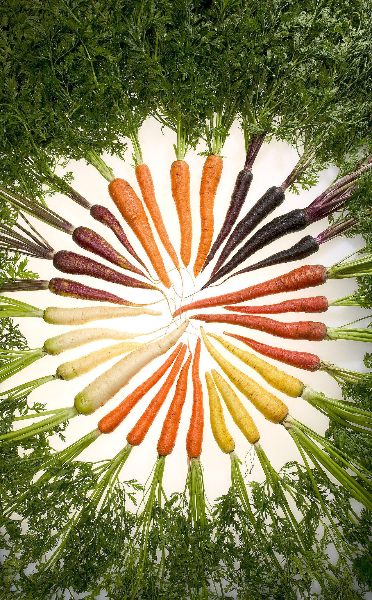 Colorful carrots! (Photo courtesy of Wikipedia)
