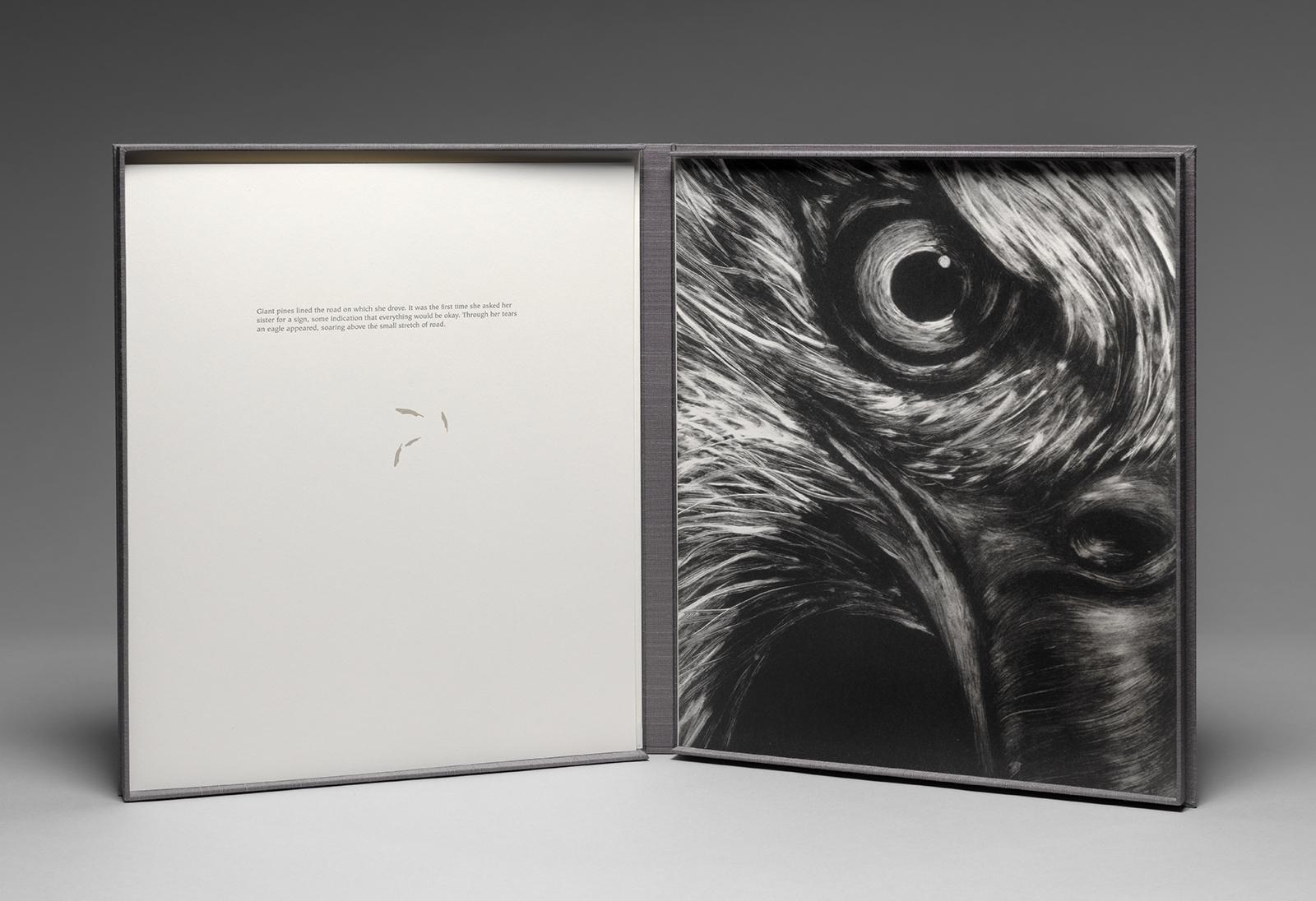 Messenger - Eagle.jpg