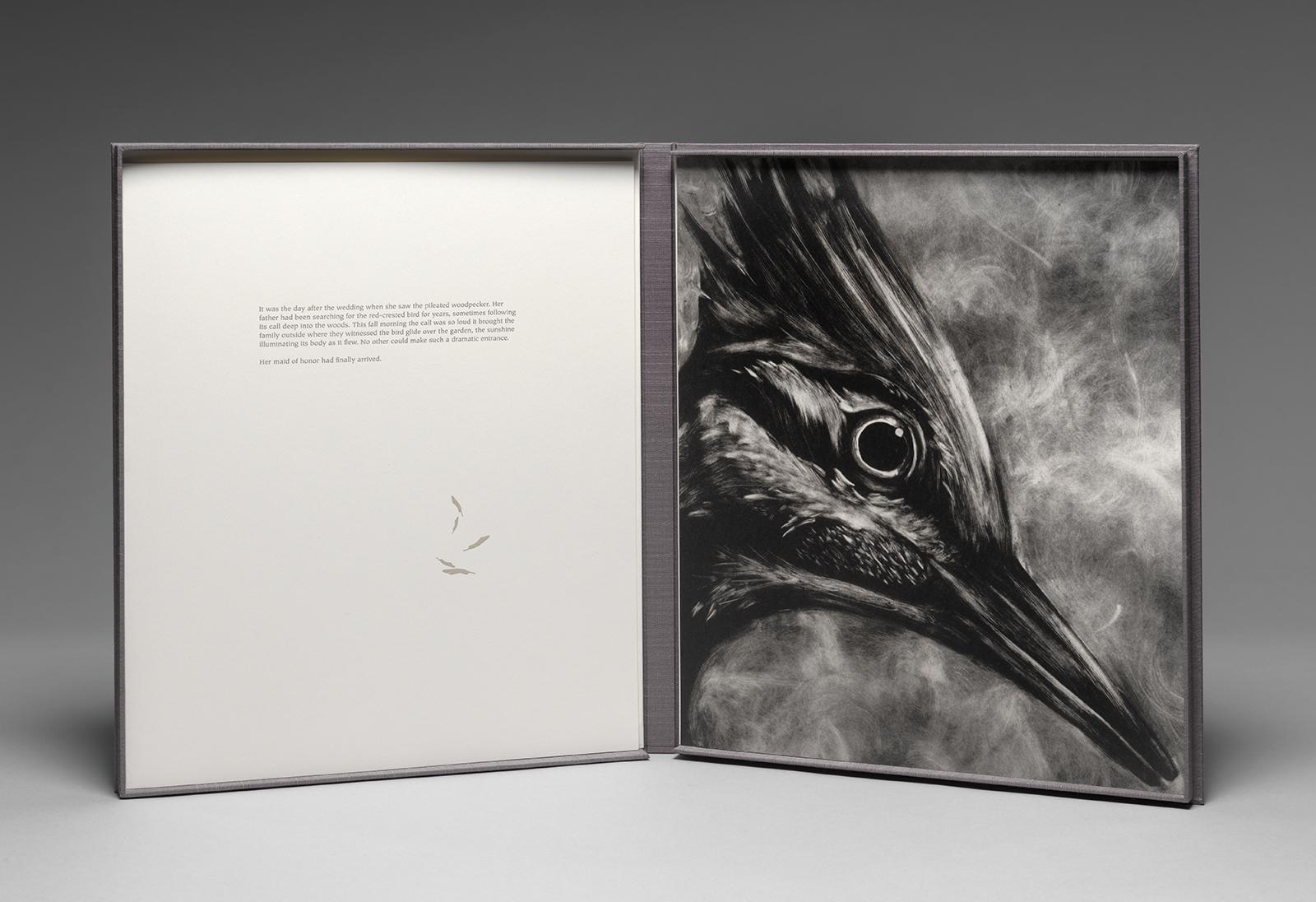 Messenger - Woodpecker.jpg